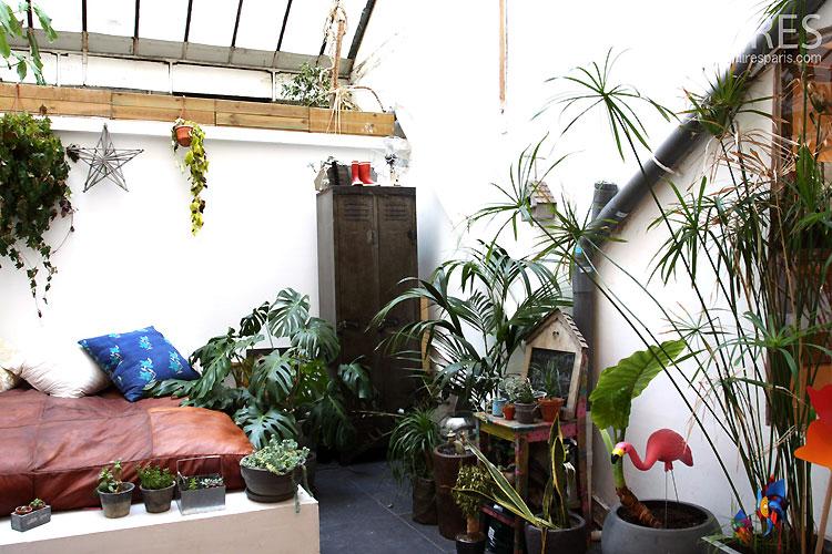 Winter garden. C0518