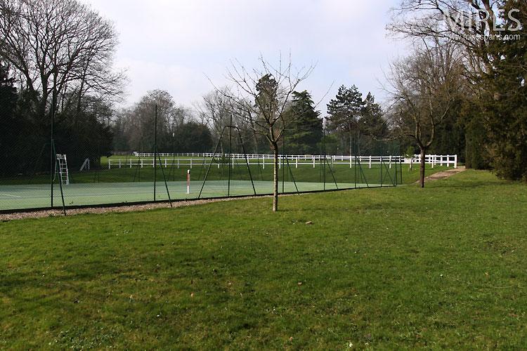 Luxuriant court de tennis. C0531