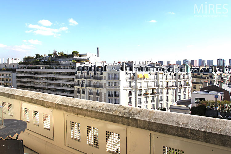 Balcon mires paris for Balcons et terrasses de paris