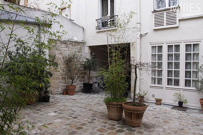 Cour parisienne. C0287