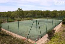 Tennis sauvage dans les bois. C0322