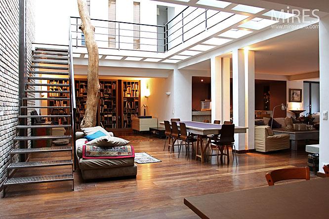 marches d acier et arbre d int rieur c0021 mires paris. Black Bedroom Furniture Sets. Home Design Ideas