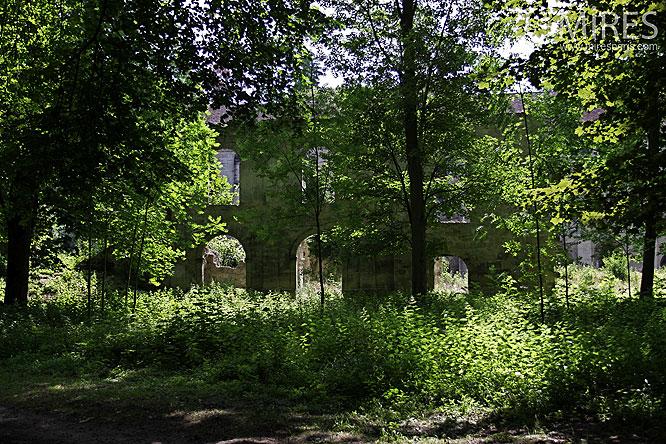 Ruines bucoliques. C0071