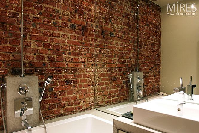 Salle d'eau et mur de briques. C0121