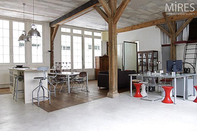 loft et atelier c0201 mires paris
