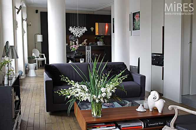 Petit loft déco. C0223 | Mires Paris