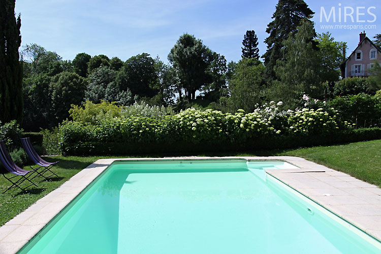 Piscine et jardin c0349 mires paris for Piscine 17eme
