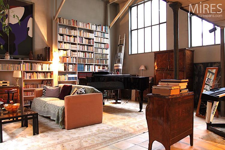 Séjour et bibliothèque. C0522