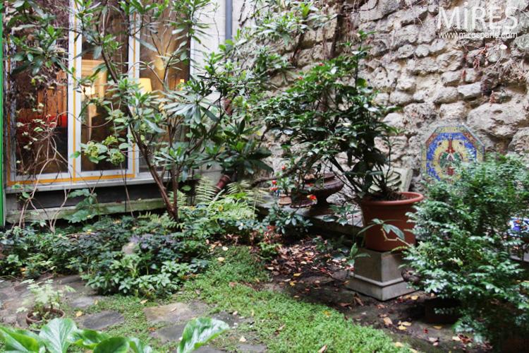 Petit jardin intérieur. C0655   Mires Paris