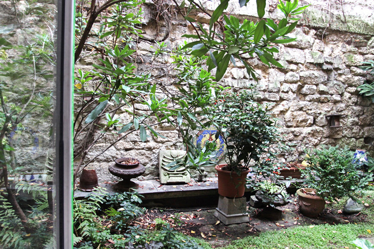 petit jardin int rieur c0655 mires paris ForPetit Jardin Interieur