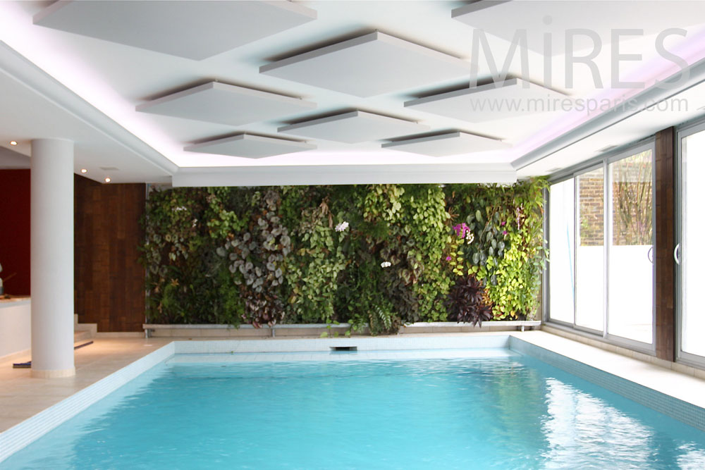 Piscine mur v g tal c0819 mires paris for Piscine 18eme