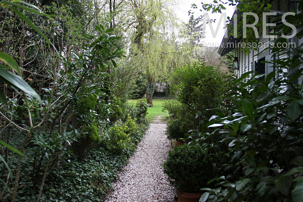 Into the nature cottage. C0861