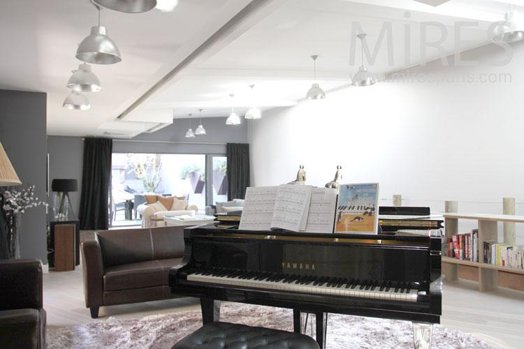Ebony piano. C0869