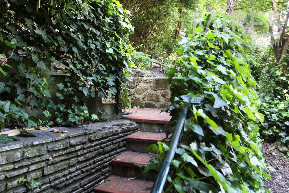 Jardin sauvage la recherche du calme c0881 mires paris for Jardin sauvage