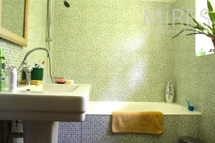 Green Bath. C0897
