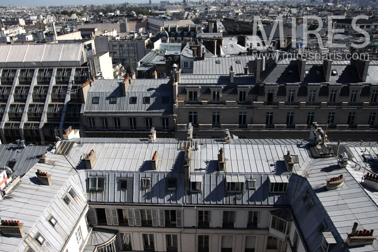 The romantic rooftops of Paris. C0909