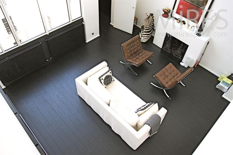 Zebra lounge. C0913