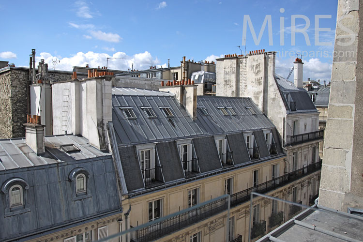 The charm of the Parisian rooftops. C0913