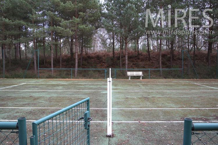 Le tennis en pinède. C0965