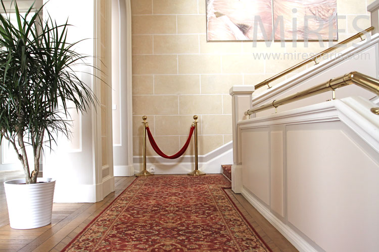 Stone staircase and red carpet. c0981
