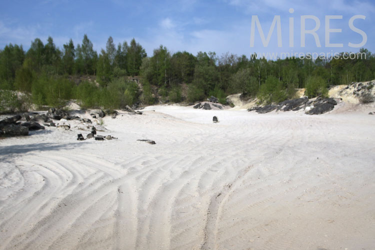Sandy beach in the forest. C1013