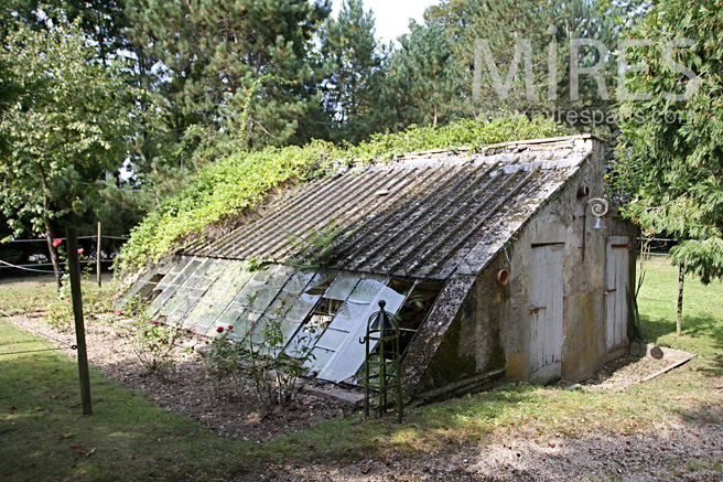 Former garage, trapped in nature. C1075
