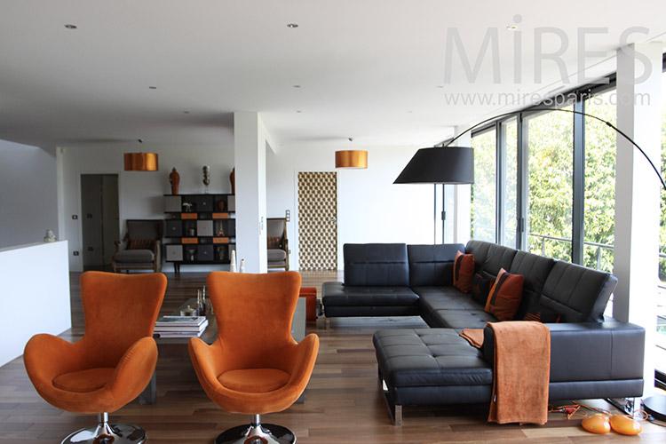 Grand salon avec terrasse et cheminée. C1217