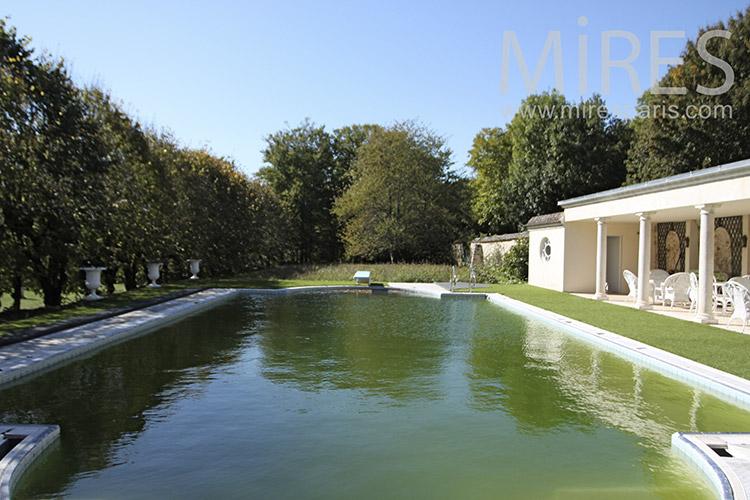 Piscine avec terrasse. C1245