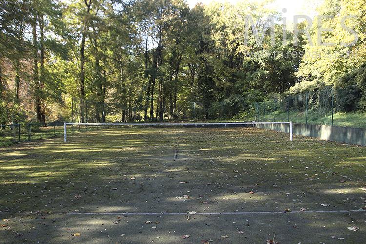 Tennis forestier. C1258