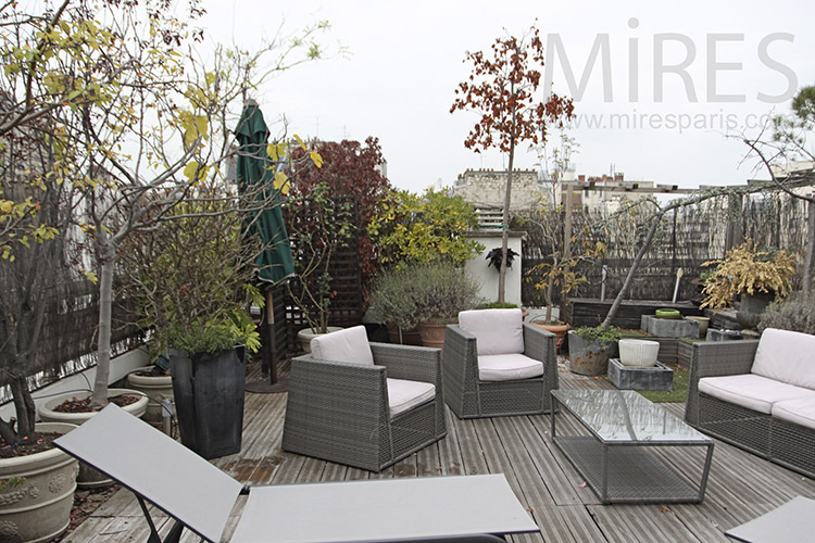 Appartement avec grande terrasse c1259 mires paris for Appartement avec terrasse paris