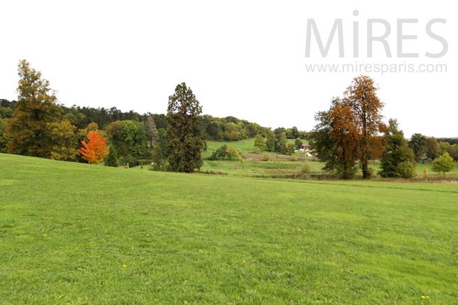 Park view. C1251
