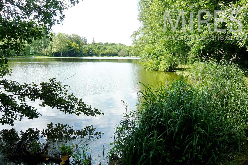 Vues sur le parc et l'étang. C1305
