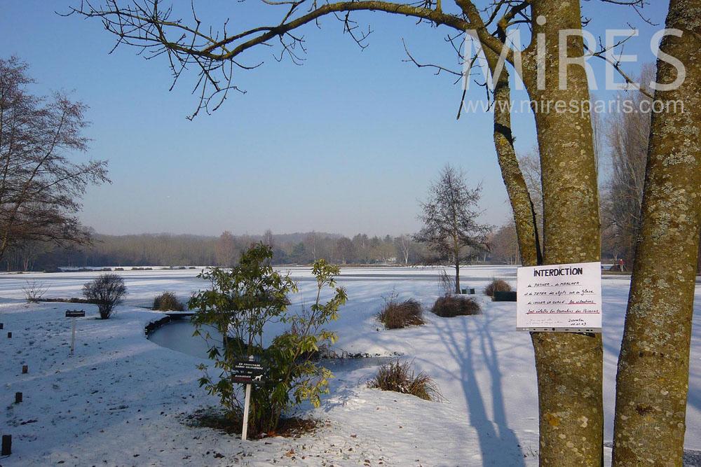 Rude hiver pour l'étang. C1305