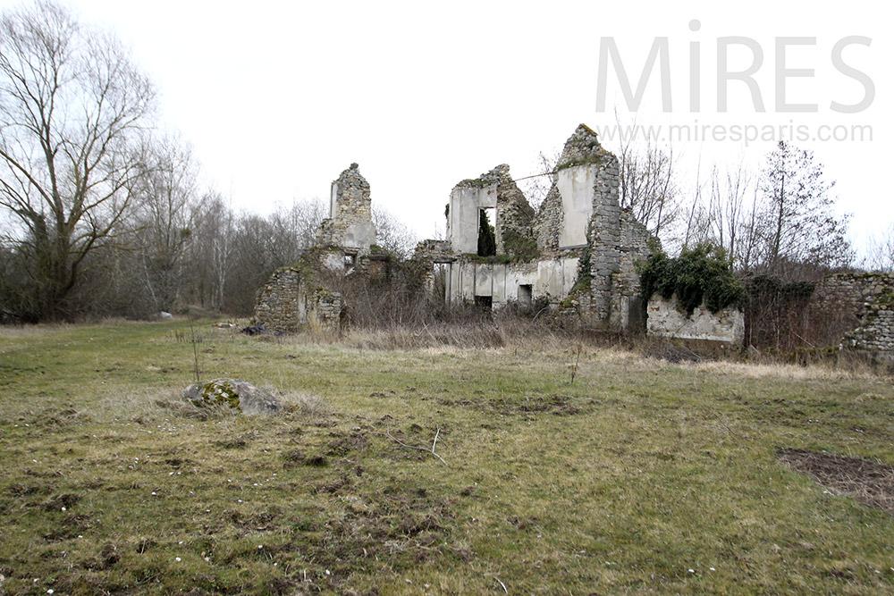 Hopeless ruin. C1310