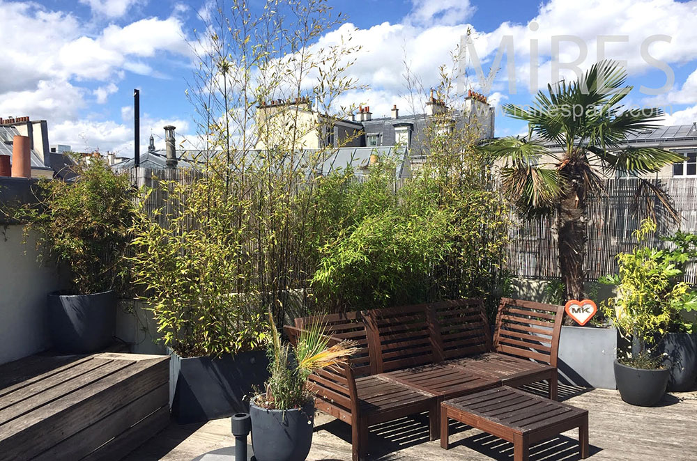 Terrasse bois, plantes et palmiers. C1320