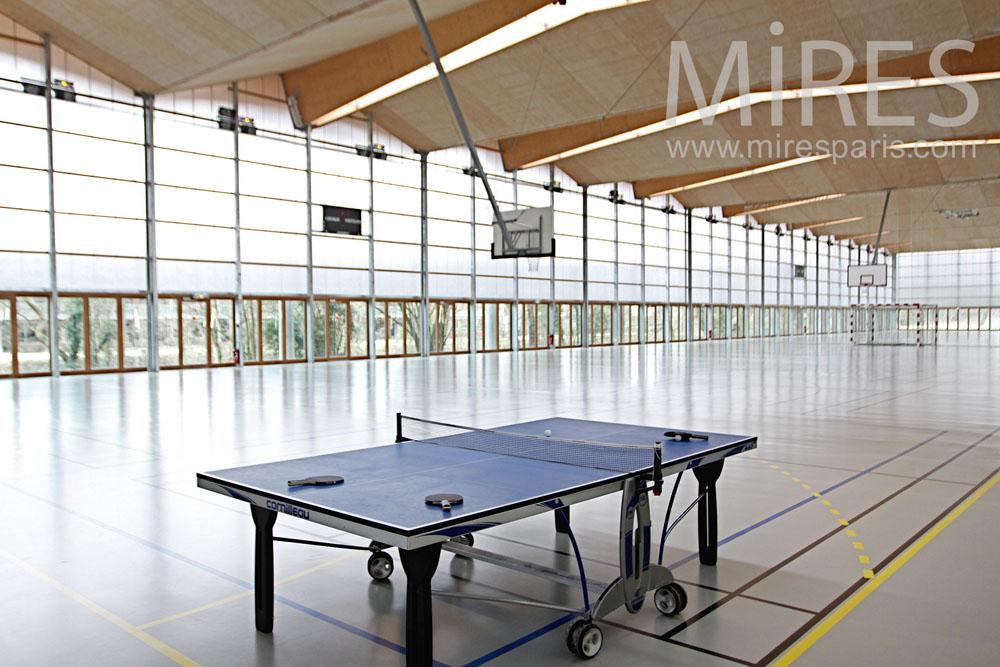 Indoor sports. C1313