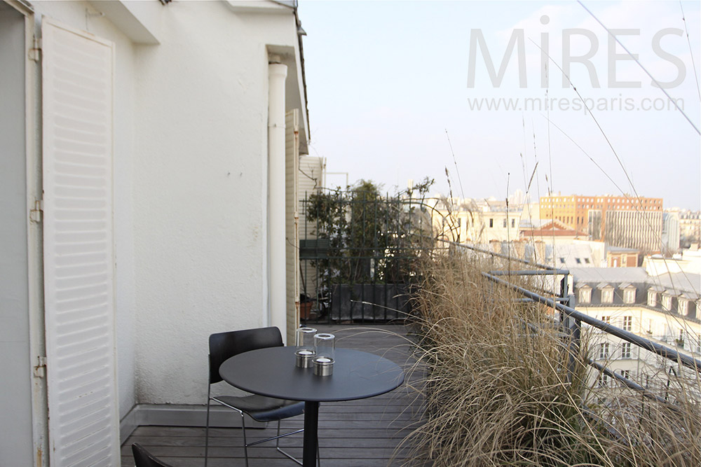 Petit appartement avec terrasse c1324 mires paris for Appartement paris terrasse