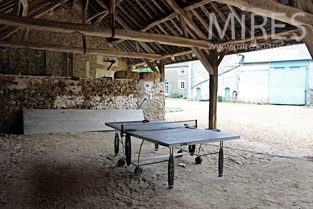 Tennis de table à l'abri. C1338