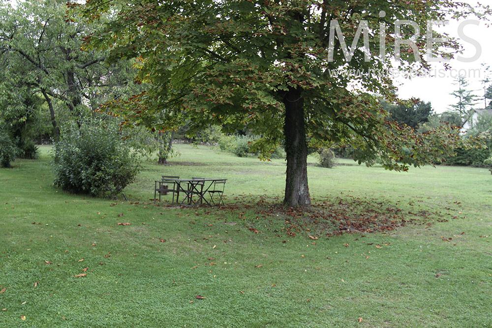 Nice big park. c1372
