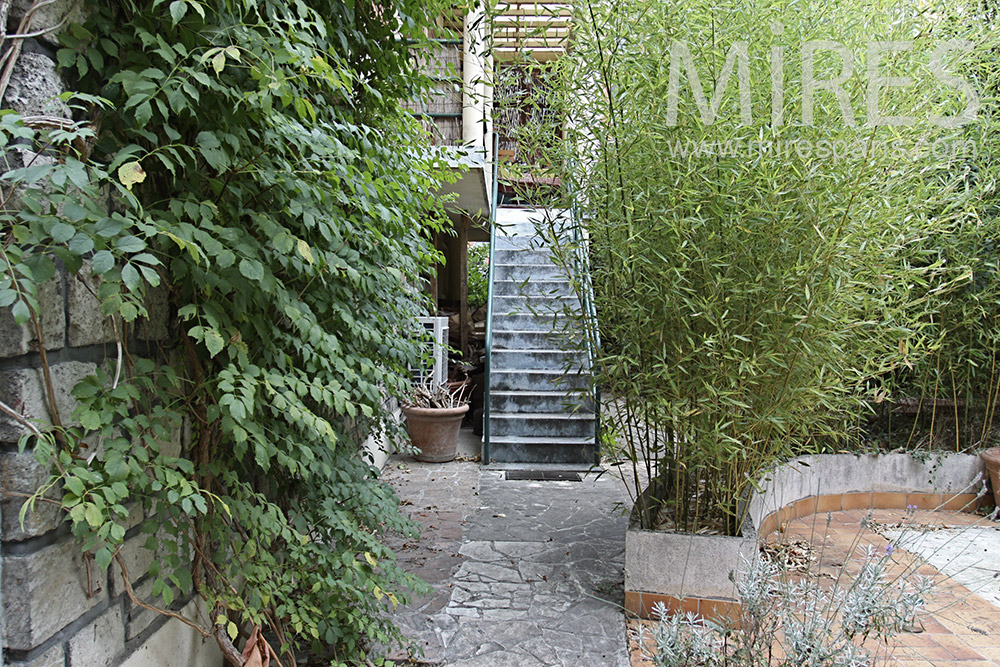 The staircase from the garden. C1382