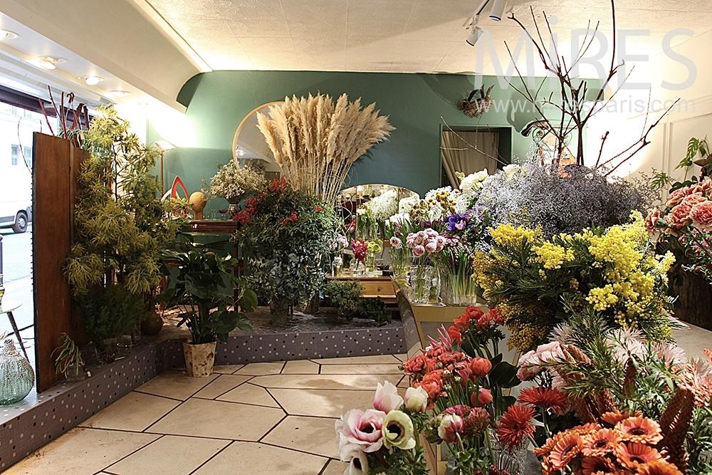 Fleuriste flamboyant ou jardin d'hiver. C1427