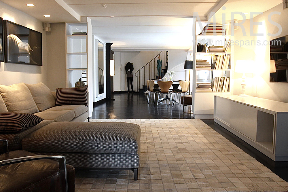 Nice apartment with rooftop in the center of Paris. C1453