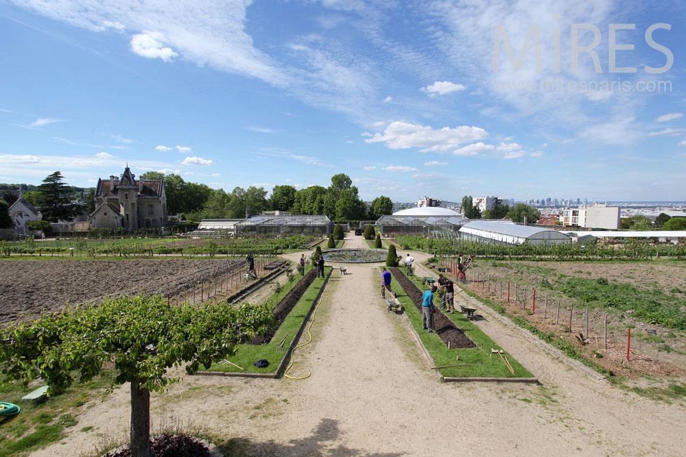 Organized farming. C1462