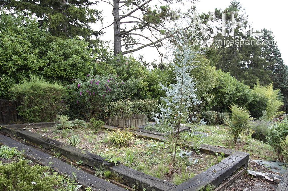Garden of plants. C1489