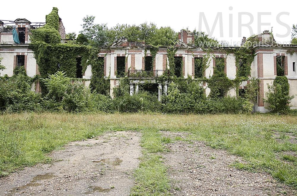 Ruines endormies. C1493