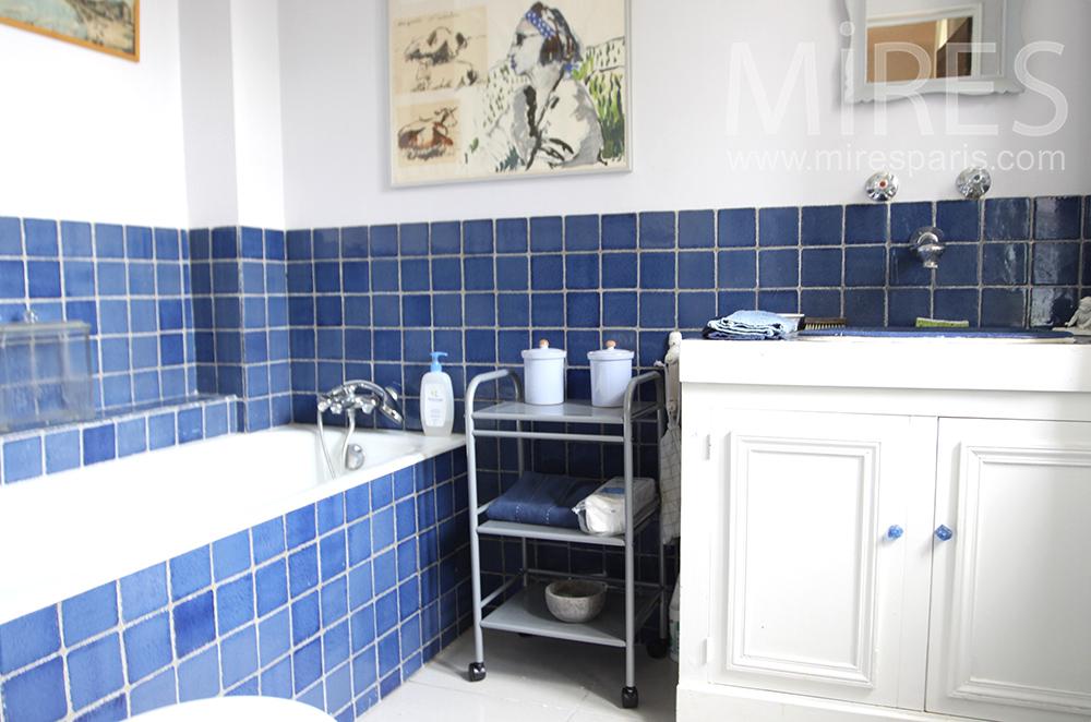 Blue baths. C1316