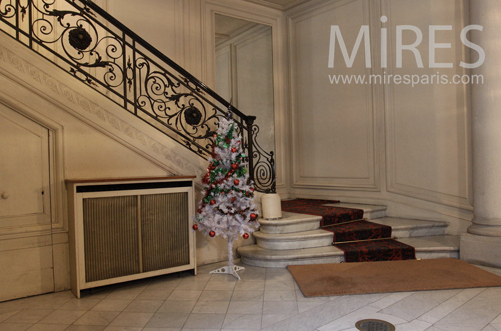 Marble staircase with carpet. C1525