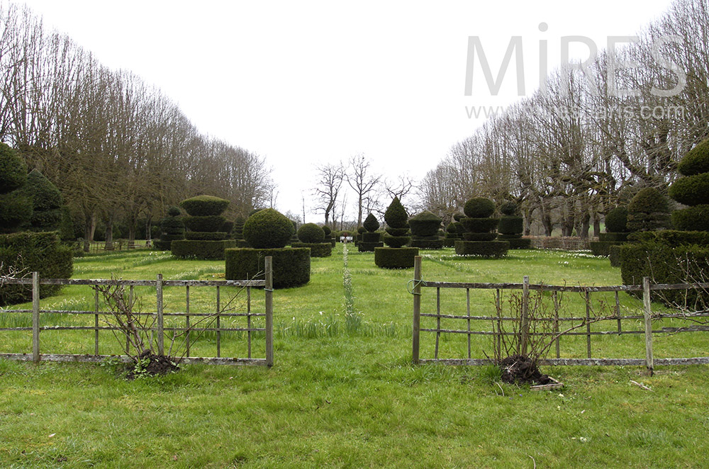Jardin sculpté. C1558