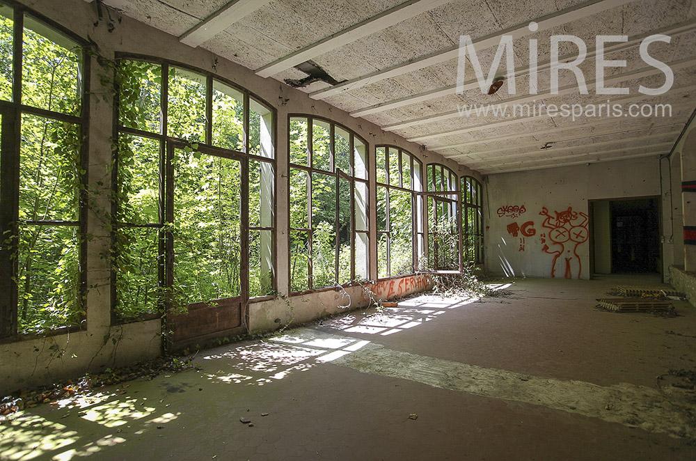 Mur vitré et nature envahissante. C1566