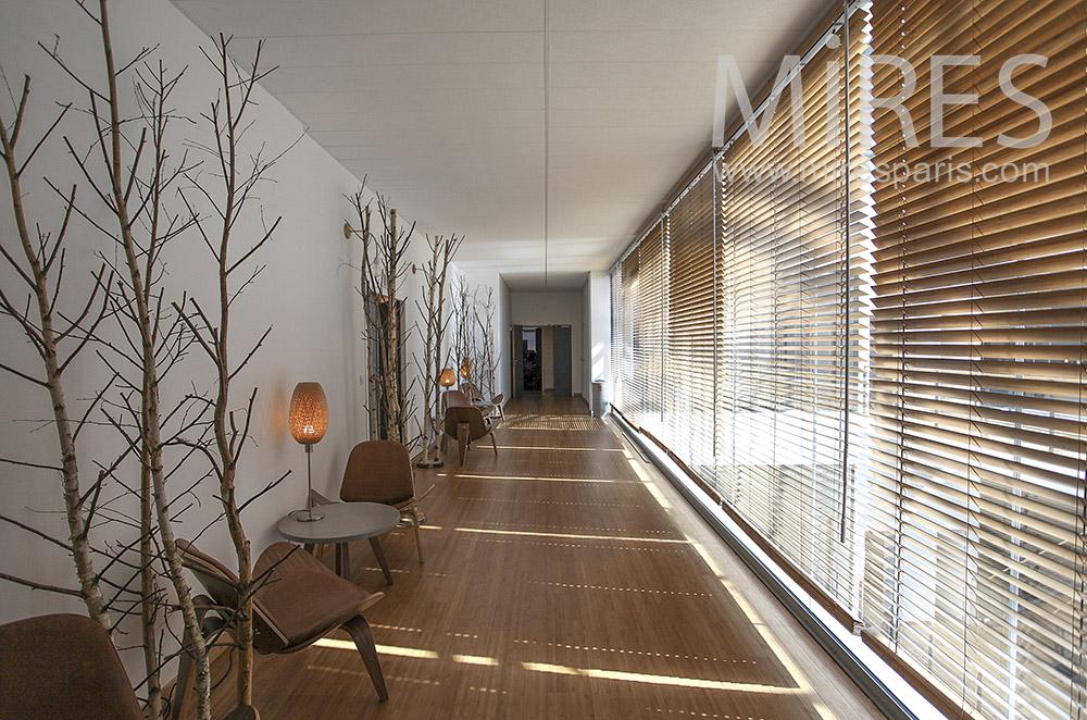 Couloirs et stores vénitiens. C1577